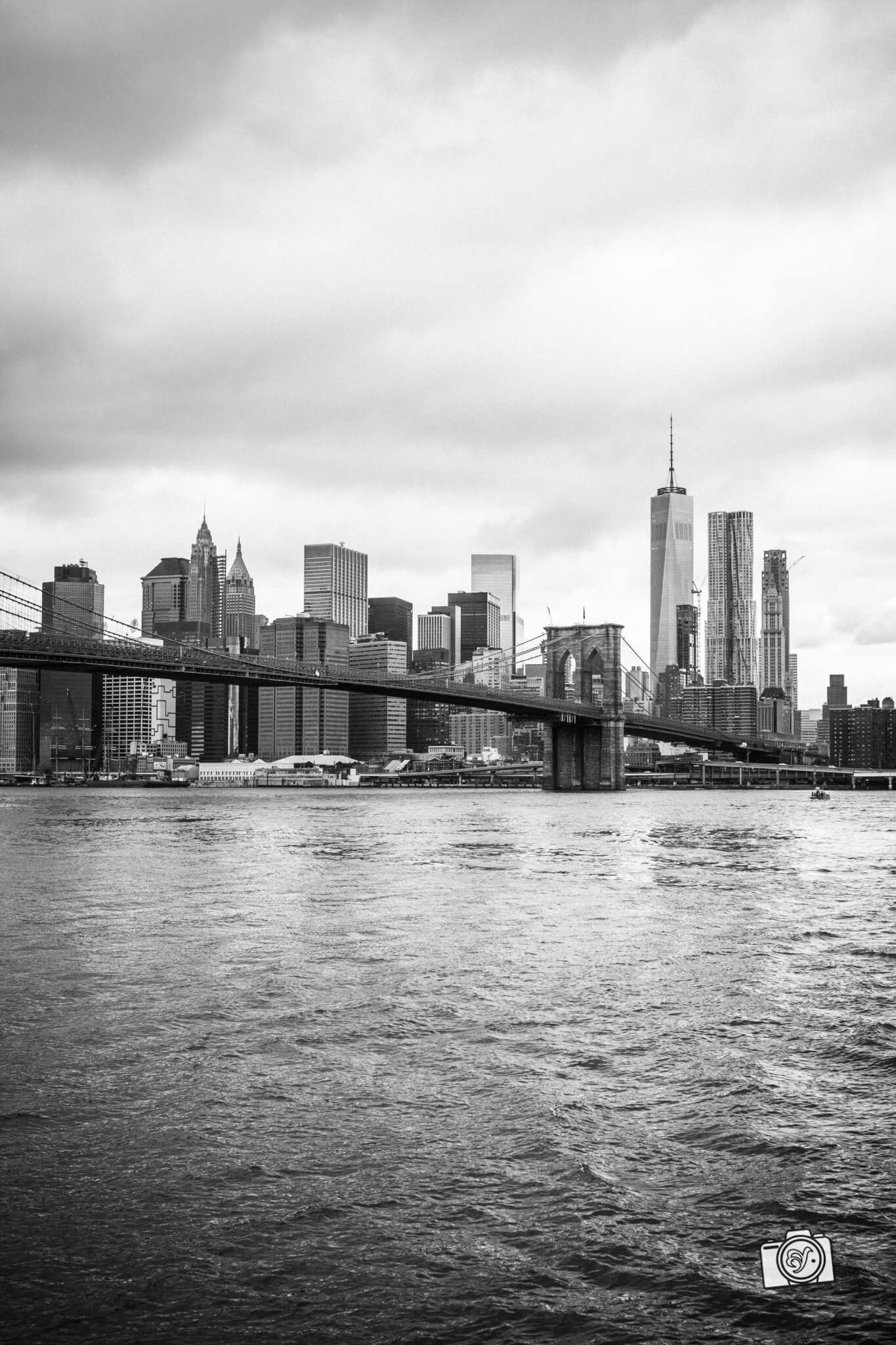 NYC-FB-3282