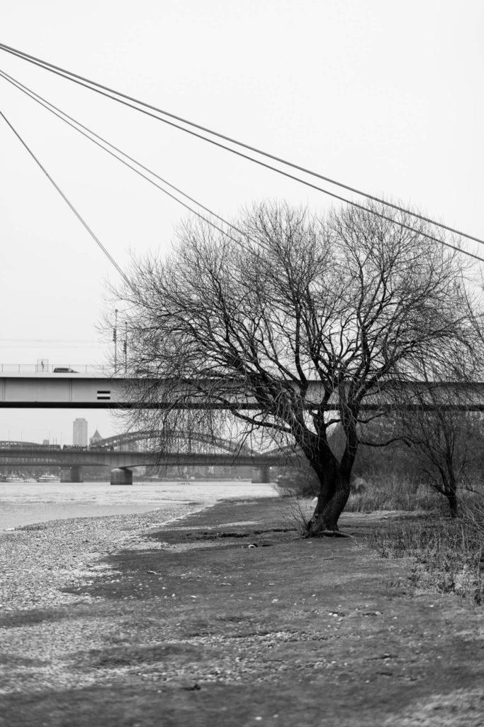 Entdecke Deine Stadt Photolodge-2153