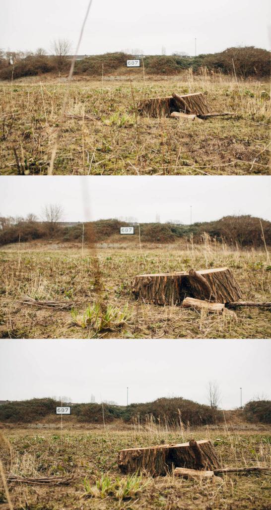 LuxLicht-Baumstumpf