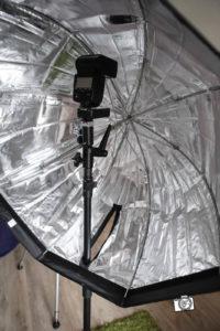 Umbrella80-4203